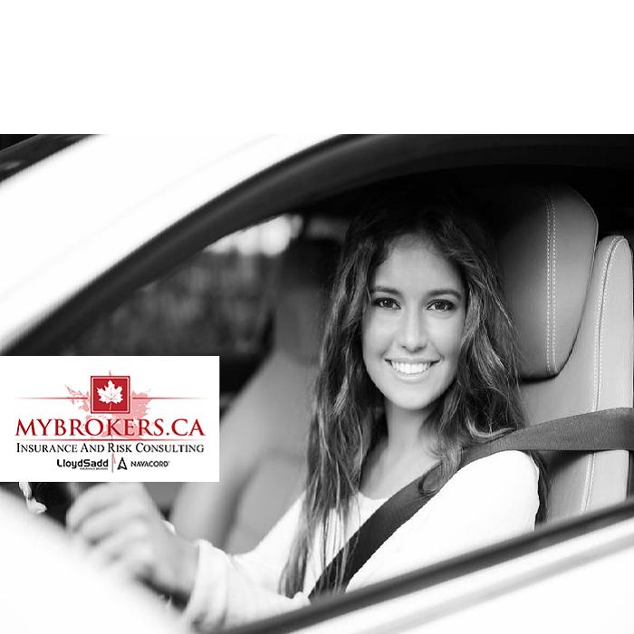 Alberta In 2020 Car Insurance Insurance Comparison Insurance