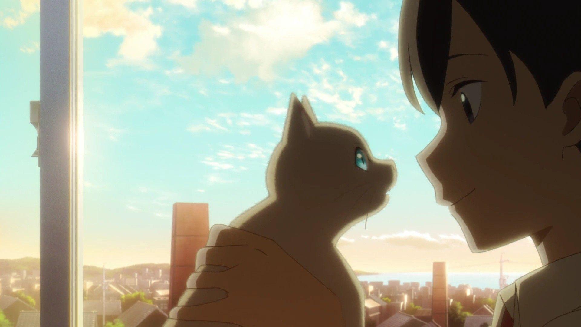 Hinode Muge Taro A Whisker Away Nakitai Watasgi Wa Neko O Kaburu In 2020 Anime Anime Movies Neko