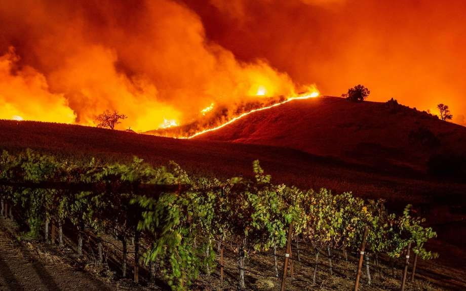 Rich Lieberman 415 Media Sonoma Geyserville Fire Top Bay Area Media Coverag Wine Country California Forest Fire California Wildfires