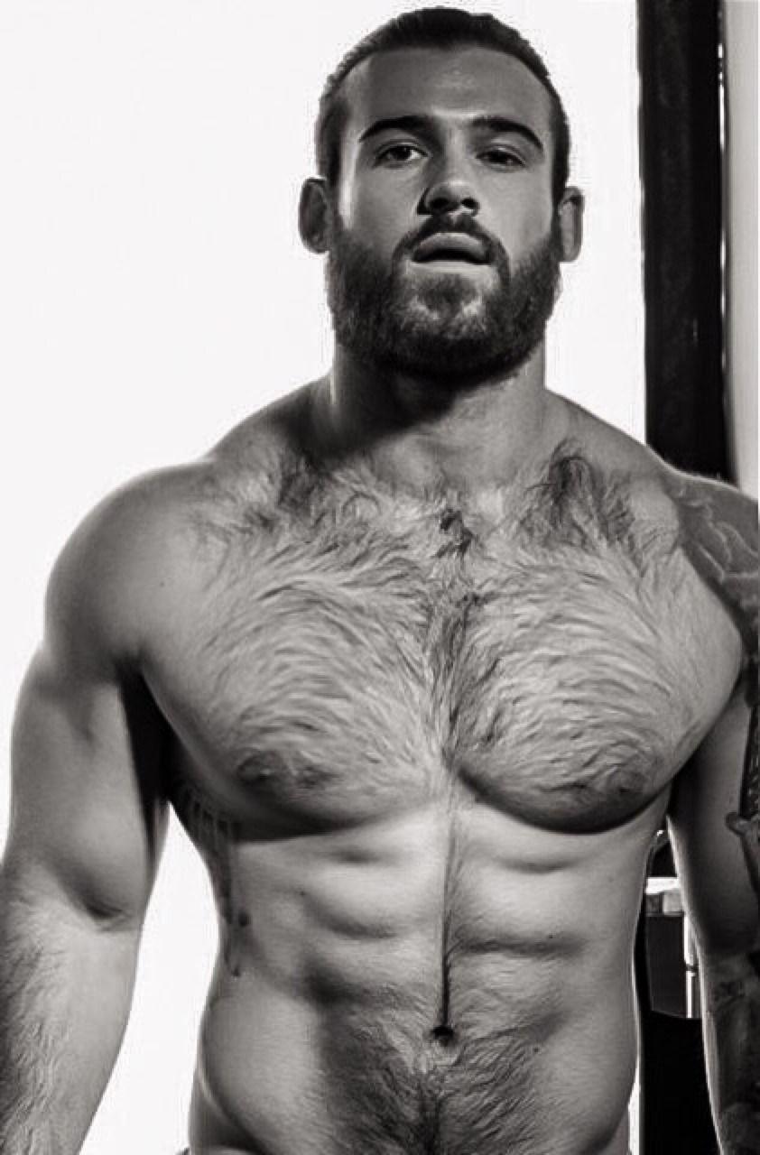 Big cock hairy muscle men