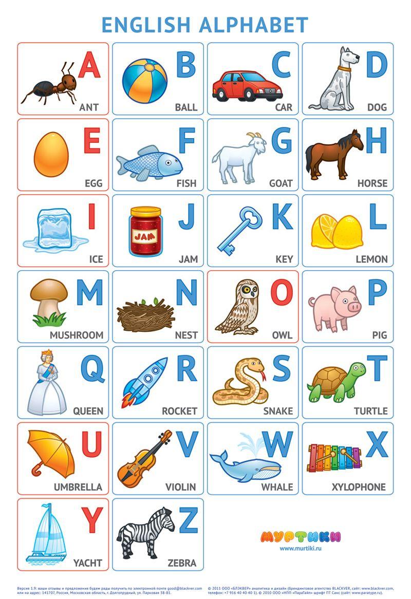 английский алфавит для детей в картинках | English ...