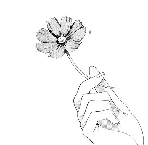 Untitled via tumblr pinterest you hand and for Hand holding a rose drawing