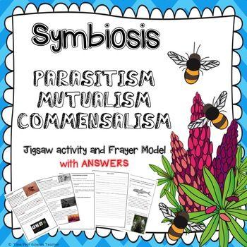 Symbiosis Worksheets Jigsaw Activity Parasitism Mutualism Commensalism Commensalism Mutualism Symbiosis