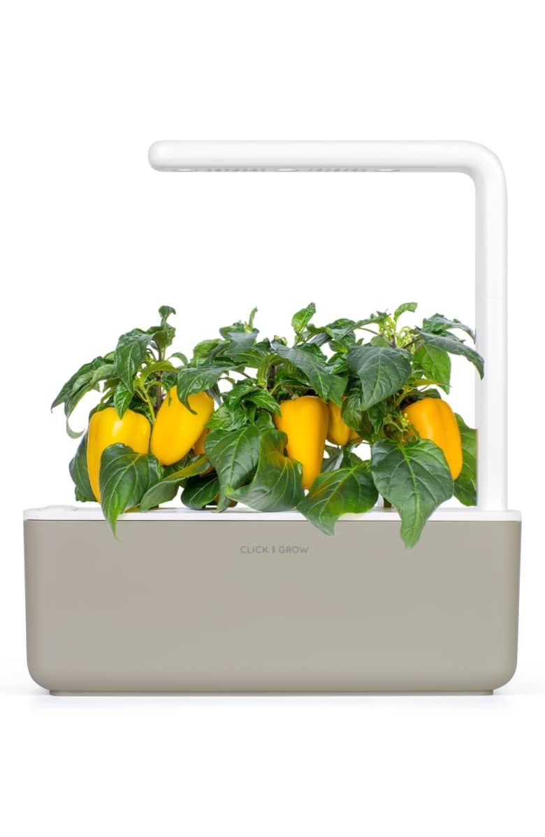 Click Grow Smart Garden 3 Self Watering Indoor Garden Nordstrom Smart Garden Self Watering Indoor Garden