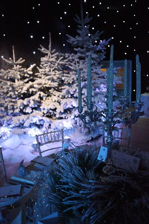 winter wonderland themed party. Pewter candelabra, starcloth ceiling snow on fir trees