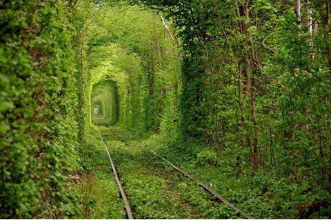 """Túnel del amor, Ucrania Este asombroso lugar lleva el nombre del """"Túnel del amor"""" y está situado en en Kevlan en Ucrania. Ahí, un tramo de una línea de tren fuera de servicio se convirtió en un pasillo rodeado de vegetación y lleno de un clima poético. El mágico lugar, de tan sólo 3 km de largo, el cual pertenece a una comunidad donde viven ocho mil personas, es considerado uno de los más románticos del mundo."""