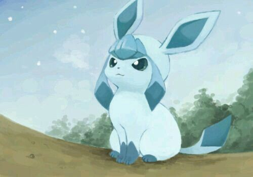 Little glaceon