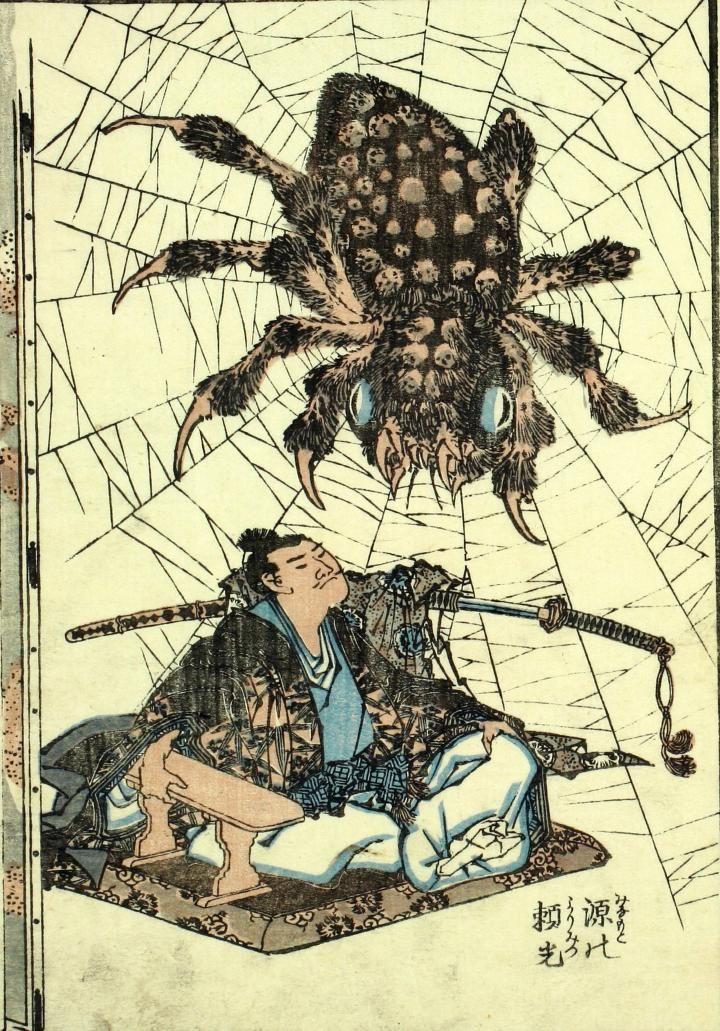 大蜘蛛 オオグモ 蜘蛛 クモ クモ 昆虫 イラスト 日本画