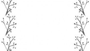 北欧風のモノトーンの木の実と枝のイラストのフレームのフリー素材 640 480pix フレーム イラスト フリー素材 イラスト