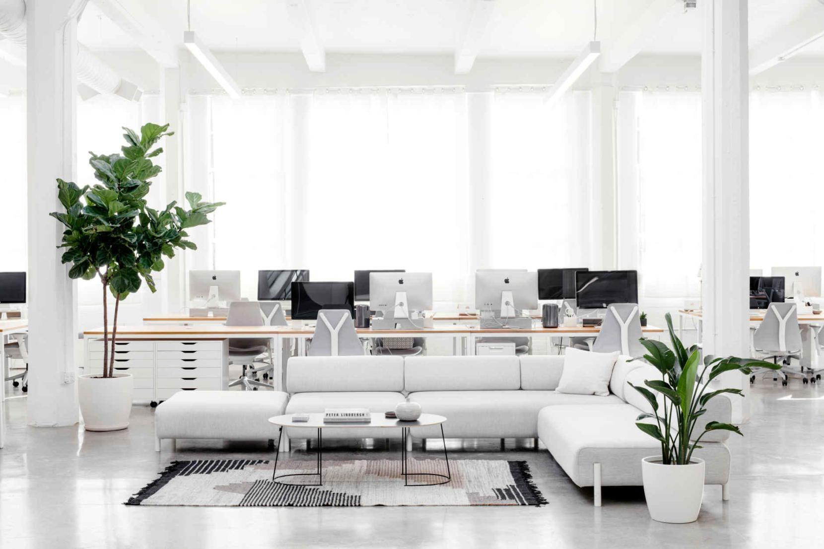 Het Nieuwe Kantoor : Het nieuwe kantoor van everlane is nóg perfecter 室内设计