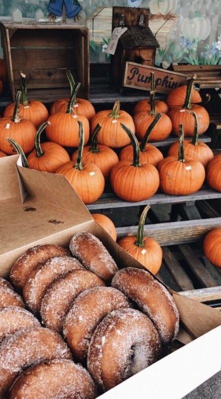 VSCO - allthethingswelove #autumnseason