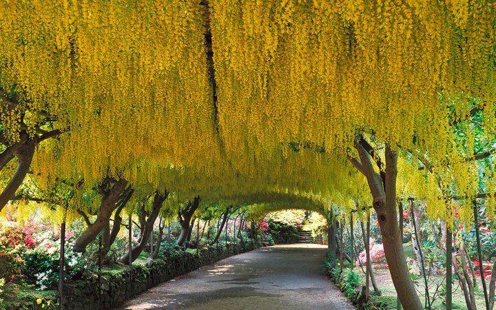 Europe's Most Picturesque Gardens: Bodnant Garden