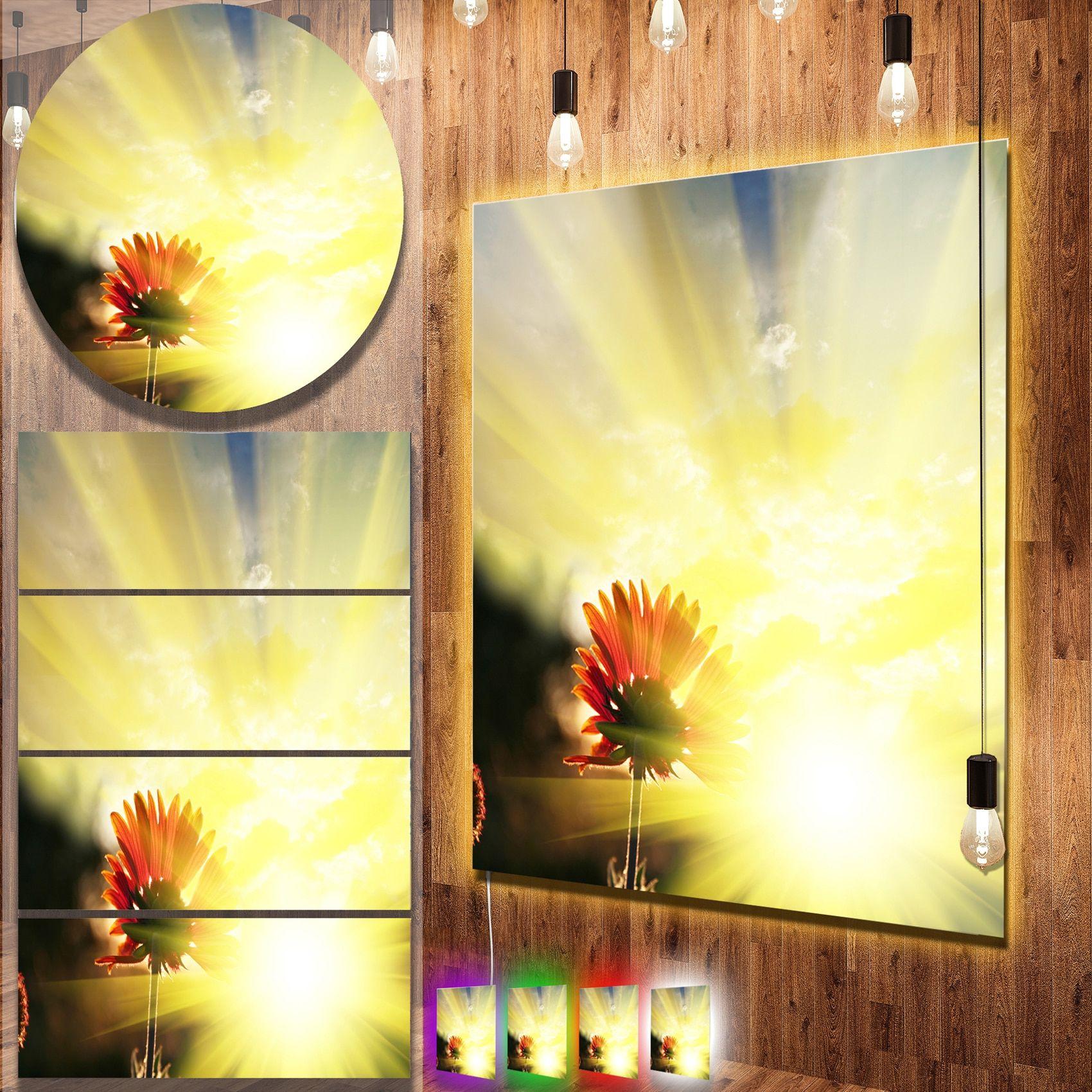 Designart \'Flower Against Bright Sunset\' Contemporary Flower Metal ...