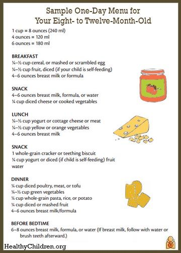Sample One Day Menu For An 8 To 12 Month Old Baby Food Recipes Baby Meal Plan Baby Eating