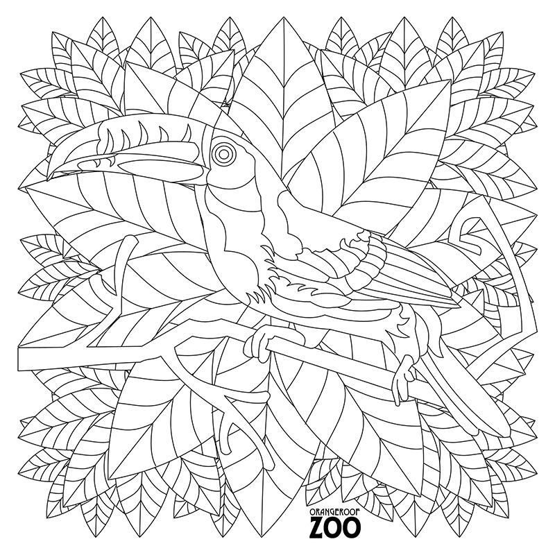 Gallery | Orangeroof Zoo - A Coloring Book for Adults