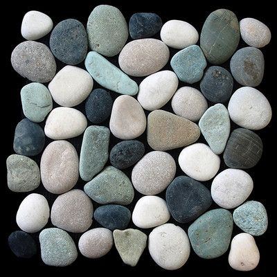 Pebble Tile Clic Random Sized Natural Stone In Multi Gets Free Shipping To Your Business From Wayfair Supply Great Deals On All