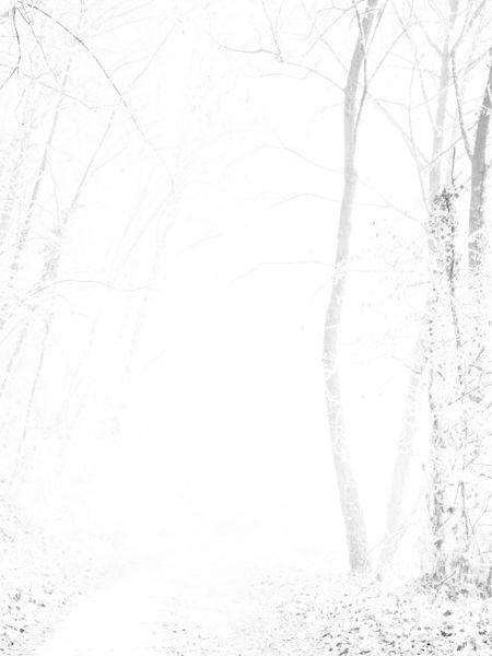 """""""Untitled (P1320325), 2013. SÉRIE BLANC D'HIVER ©Ccil. ©Photographs by Ccil"""