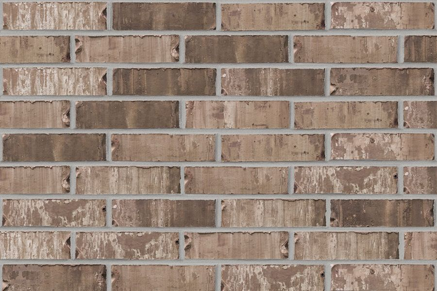 Acme Sable Oak Brick Transitional Lighting