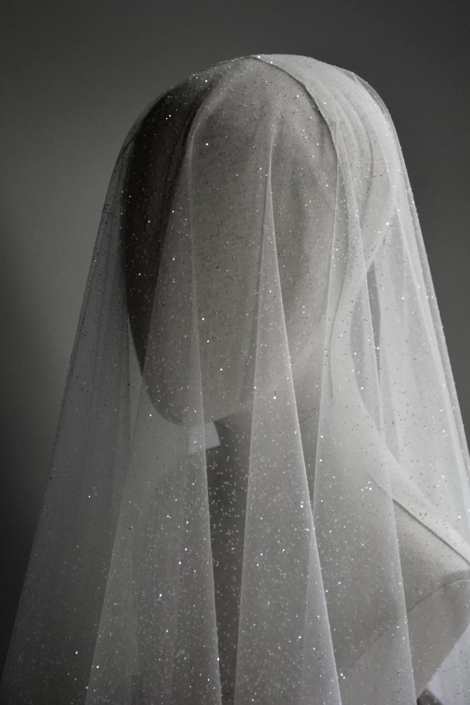 Capella Sparkling Wedding Veil With Blusher Sparkling Wedding Veils Sparkle Wedding Dress Blusher Veil