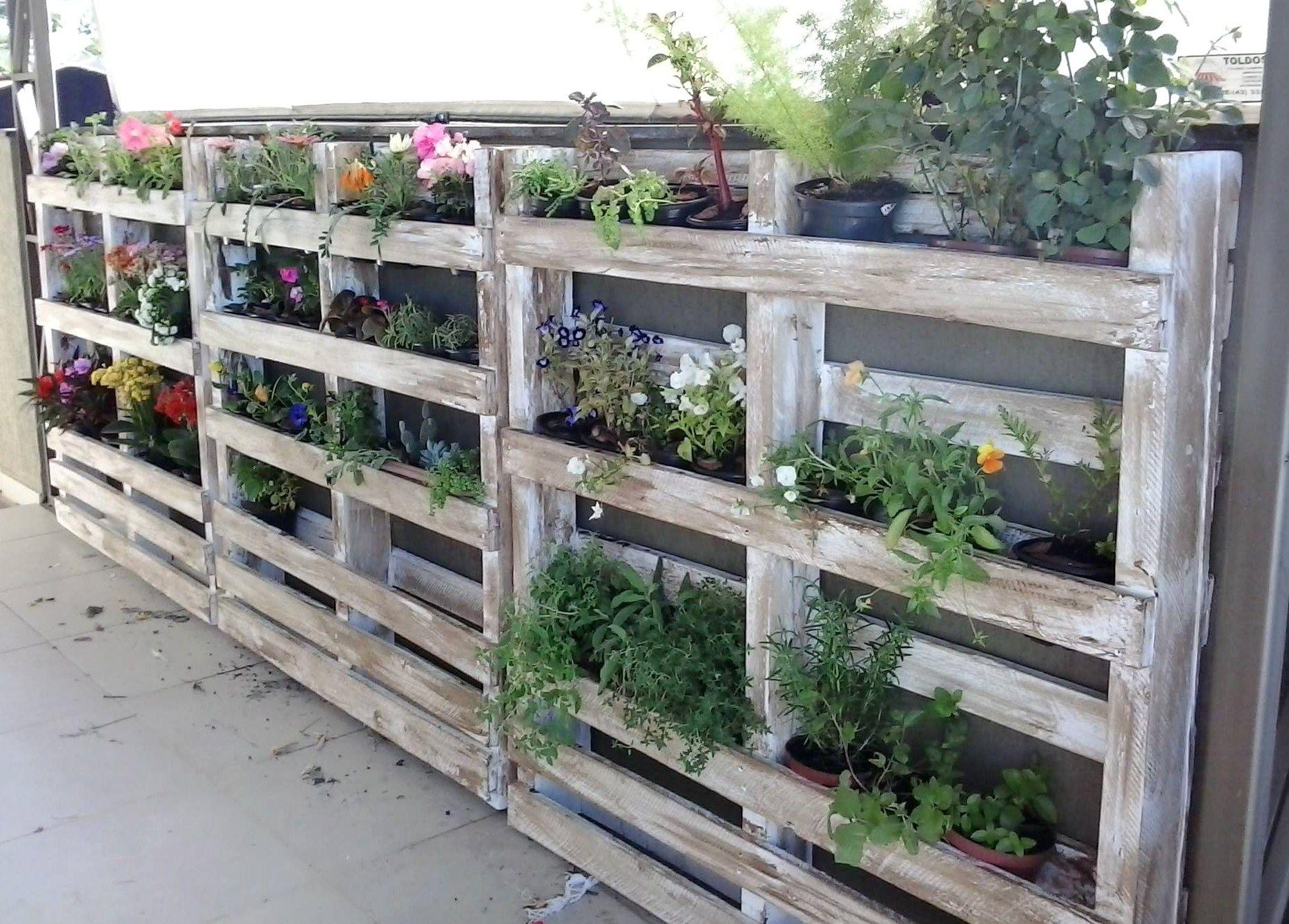 avec une palette entire agrmente de fleurs vous pouvez aisment embellir le jardin habiller un mur dfrachi ou faire une haie de sparation - Fabriquer Jardiniere Avec Palettes