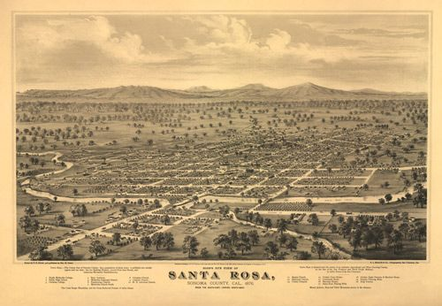 Los Angeles California 1877 Historic Panoramic Town Map 16x24