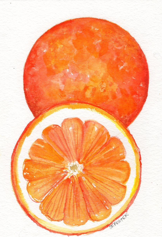 Original Oranges Watercolor Painting 5 X 7 Orange Fruit Wall Art