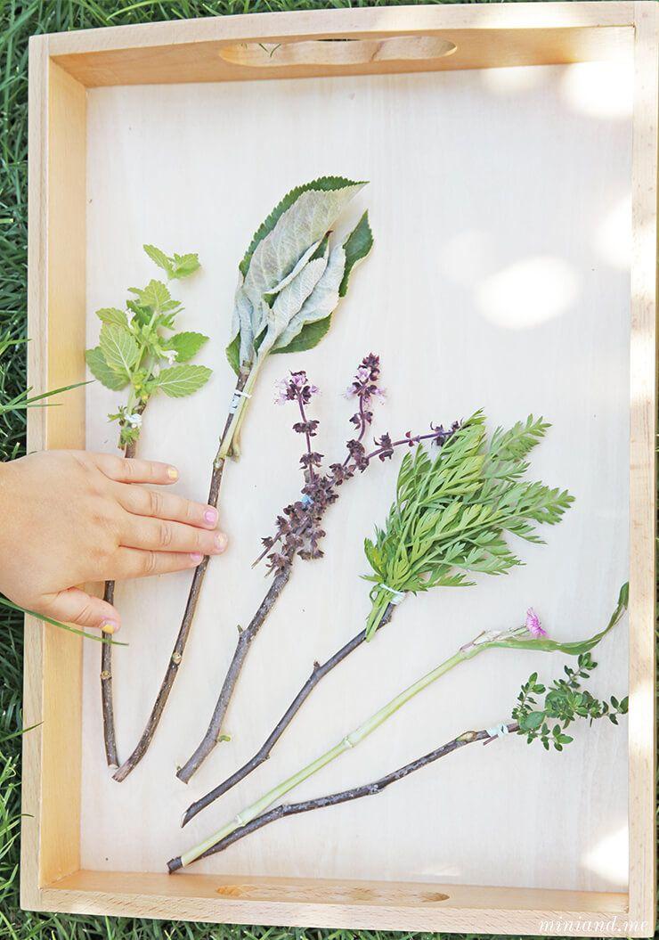 Naturpinsel Basteln Pssst So Malen Kleine Waldelfen Die