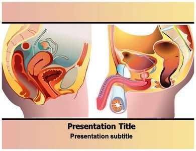 Download online editable prostate cancer powerpoint template and download online editable prostate cancer powerpoint template and background httpgoo toneelgroepblik Image collections