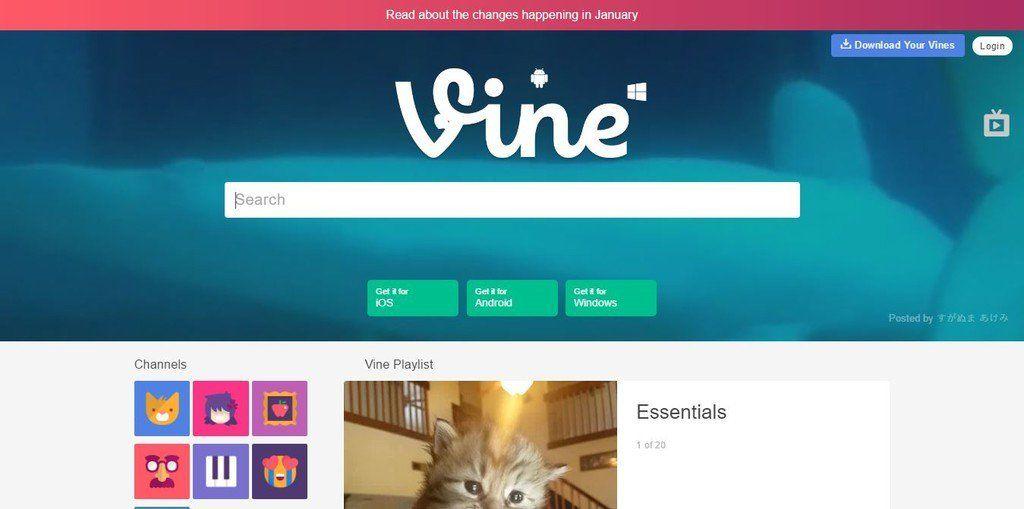 Cómo descargar tus Vines antes de que la plataforma cambie por completo http://bit.ly/2h2xor8 http://bit.ly/2hhP5is #CPMX8 Quiriarte.com