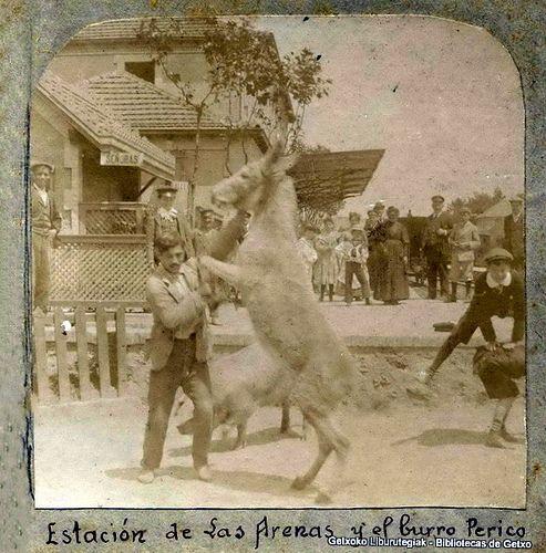 La antigua estación del ferrocarril de Las Arenas y el burro Perico (ref. 03923)