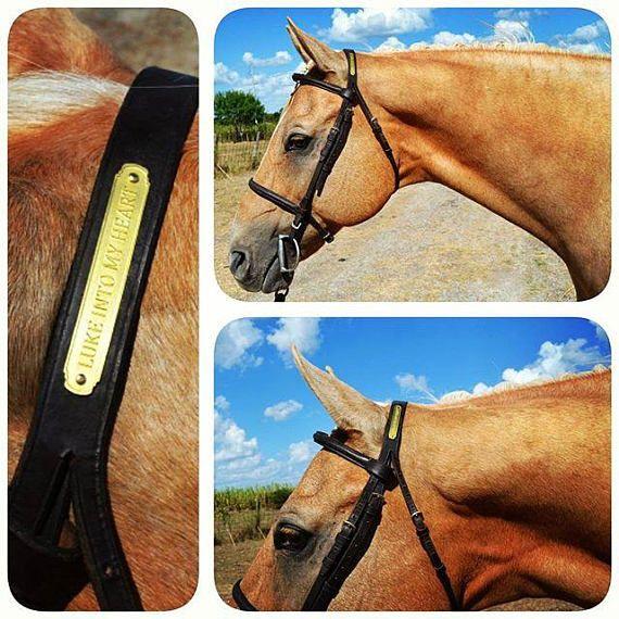 Custom Horse Bridle Nameplate | Horse Nameplates | Horses