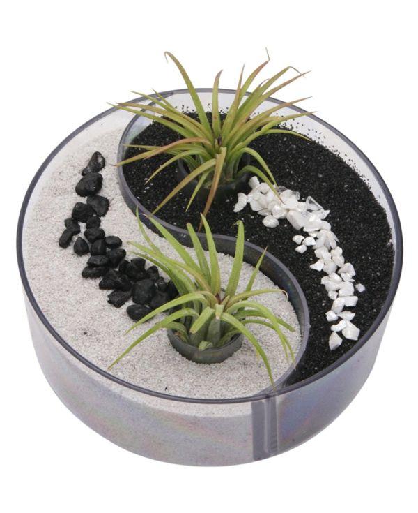 le mini jardin zen d coration et th rapie bydlen pinterest mini jardin. Black Bedroom Furniture Sets. Home Design Ideas