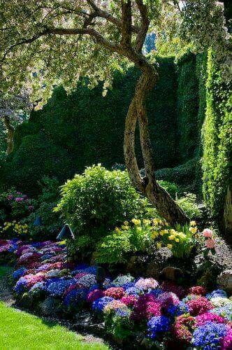 So pretty | Beautiful gardens | Pinterest | Gardens, Flowers and ...