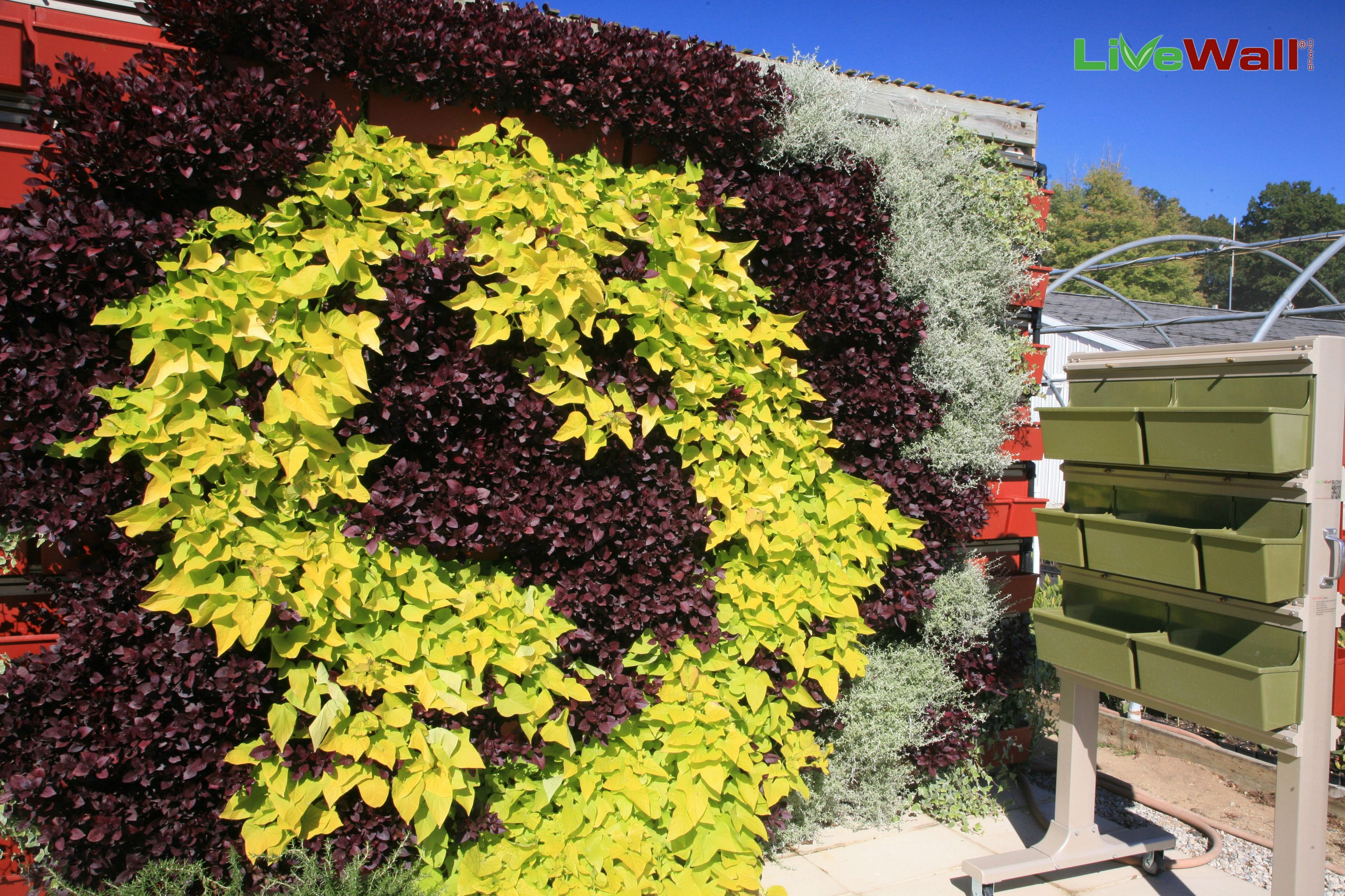 Livewall green wall system make conferences more comfortable - The Mobile Livescreen System Right Allows You To Be Mobile And Grow Your Vertical Living Wallsgreen
