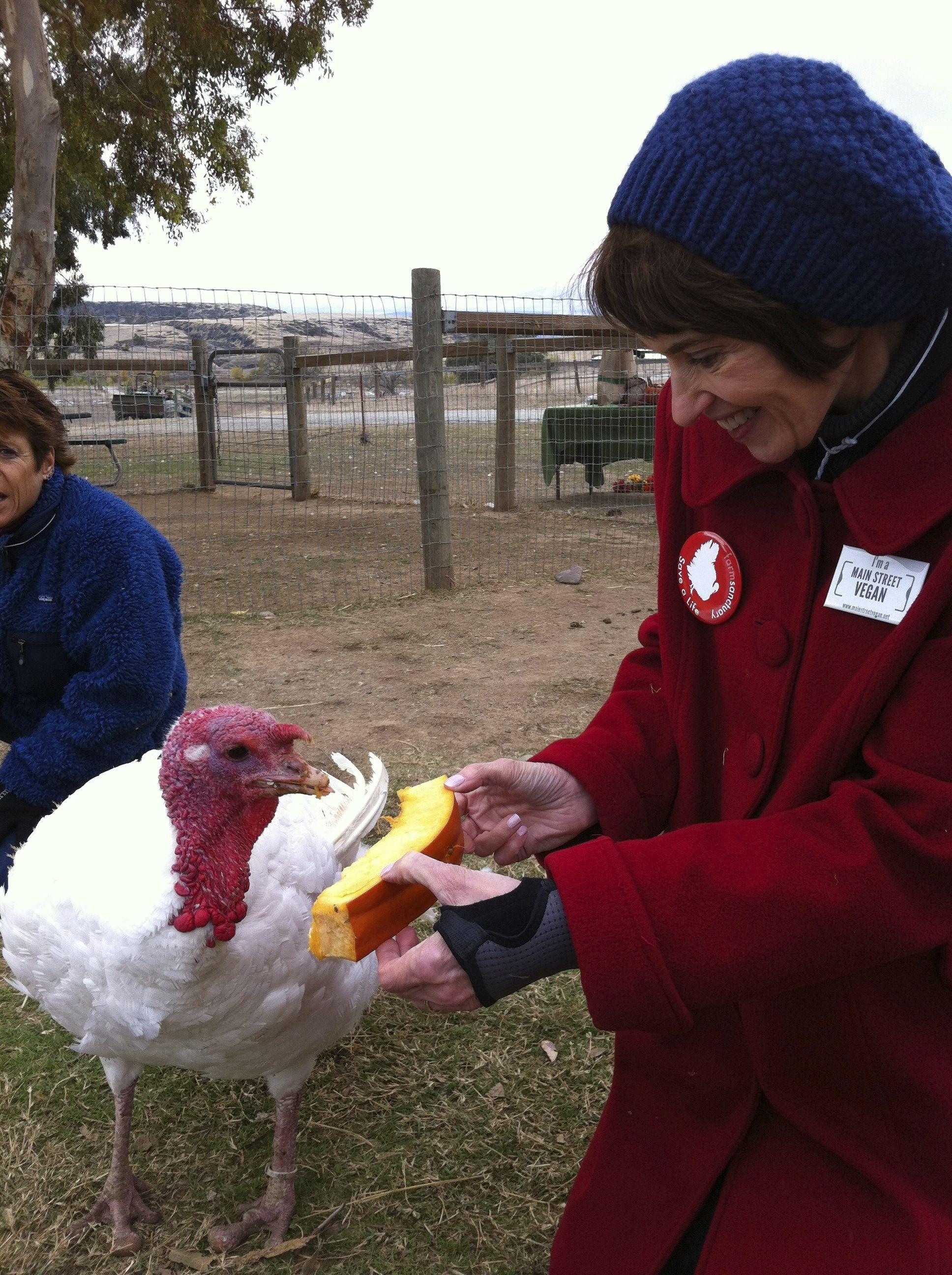 Feeding squash to a turkey at Farm Sanctuary in Orland, CA