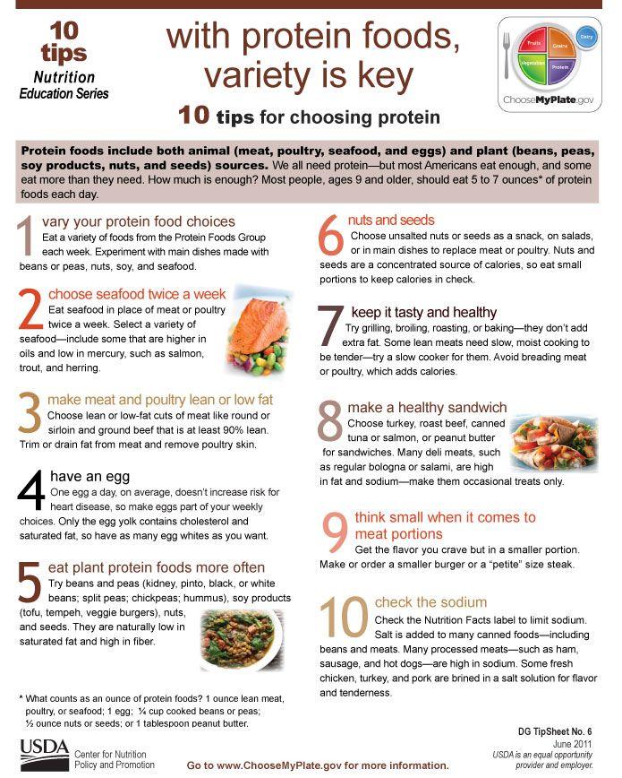 hiw.much protein oer.day carnivore diet