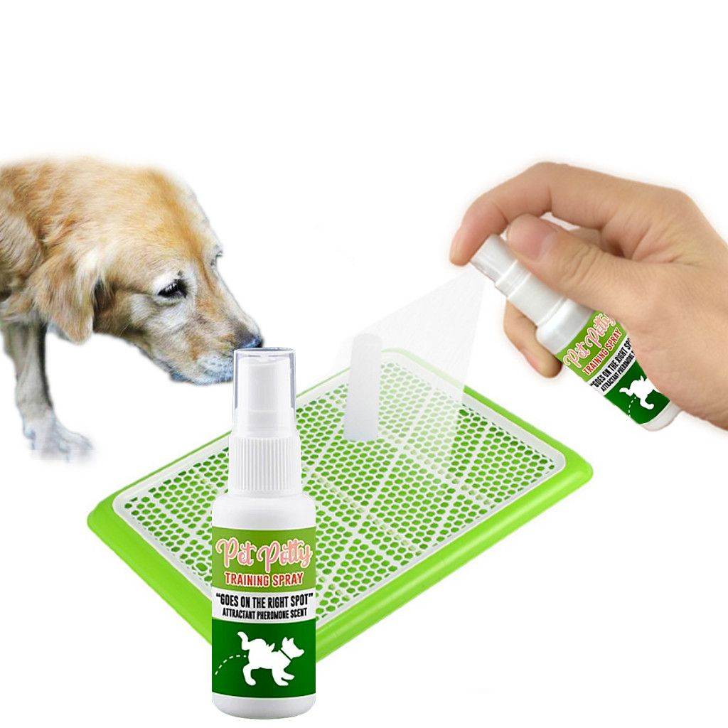 Buy More Get Free Spray Pet Potty Aid Training Spray In 2020 Pets Dog Litter Box Potty