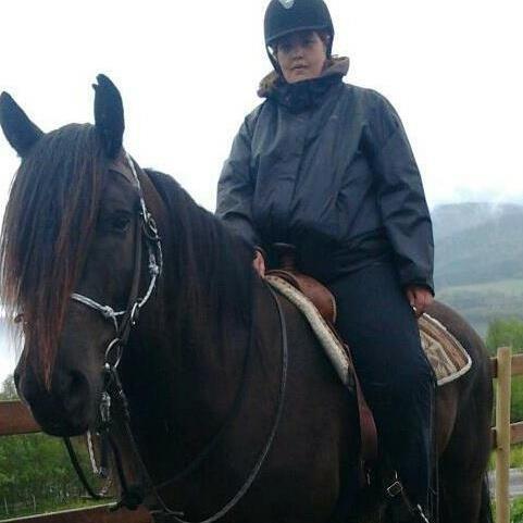 Mæ shjøll på 1 hest som heter Odin, han e min favoritt hest.