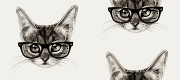 Hipster Cat Tumblr