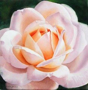 Retrato de un hermoso melocotón impresionante y blanco de color rosa - Pintura Rose en acuarela