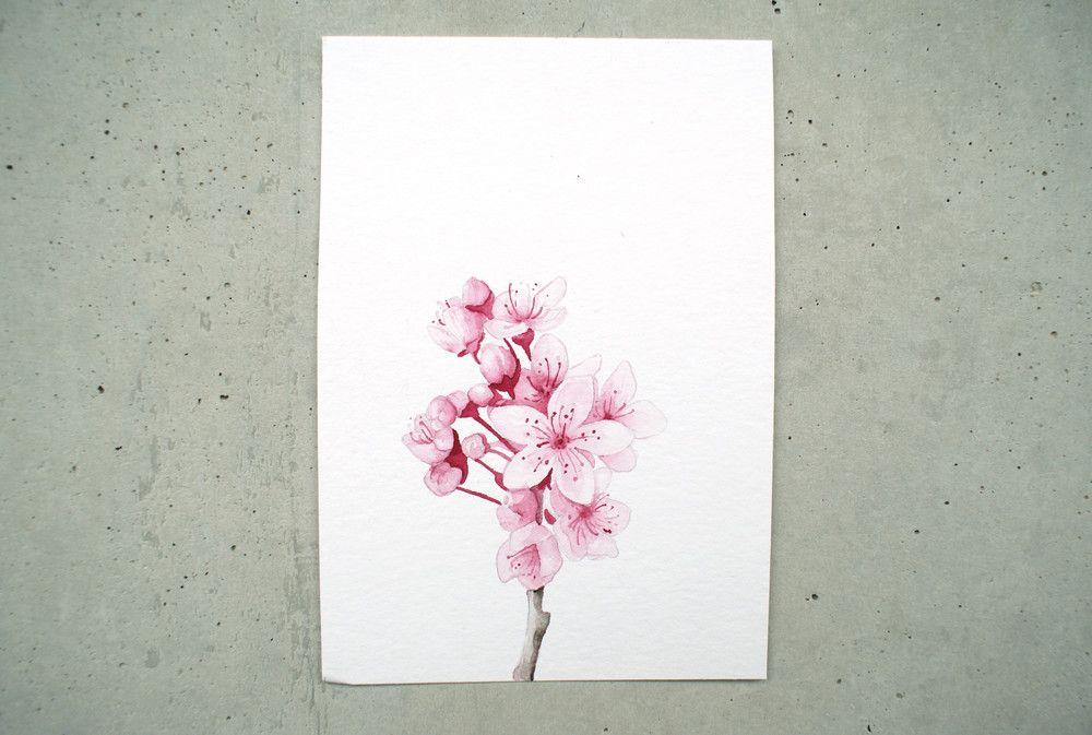 Illustrationen Illustration Kirschbluten Aquarell Ein
