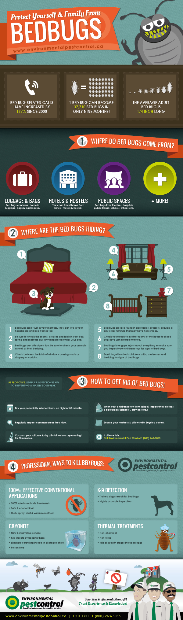Bed Bugs Protect Yourself and Your Family! This