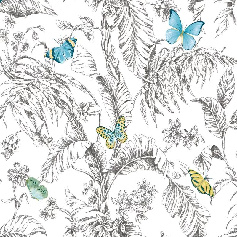 Pin on Butterflies & birds