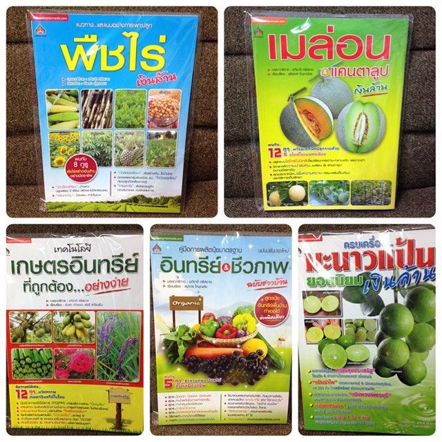 มาเปนชาวสวนกนเถอะ หนงสอเกษตรยอดฮตออกใหมอกแลวครบ เมลอน มะนาวแปน เกษตรอนทรย #plant #book #fruit #organic