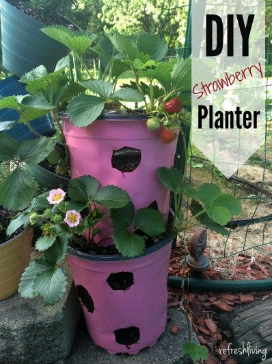 Diy Strawberry Planter From Recycled Materials Pinterest Challenge Refresh Living Strawberry Planters Strawberry Plants Vegetable Planters