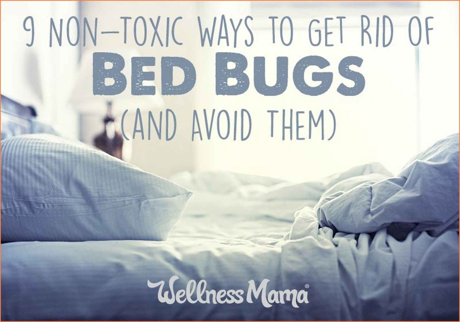 Natural Ways To Get Rid Of Bed Bugs Rid of bed bugs, Bed