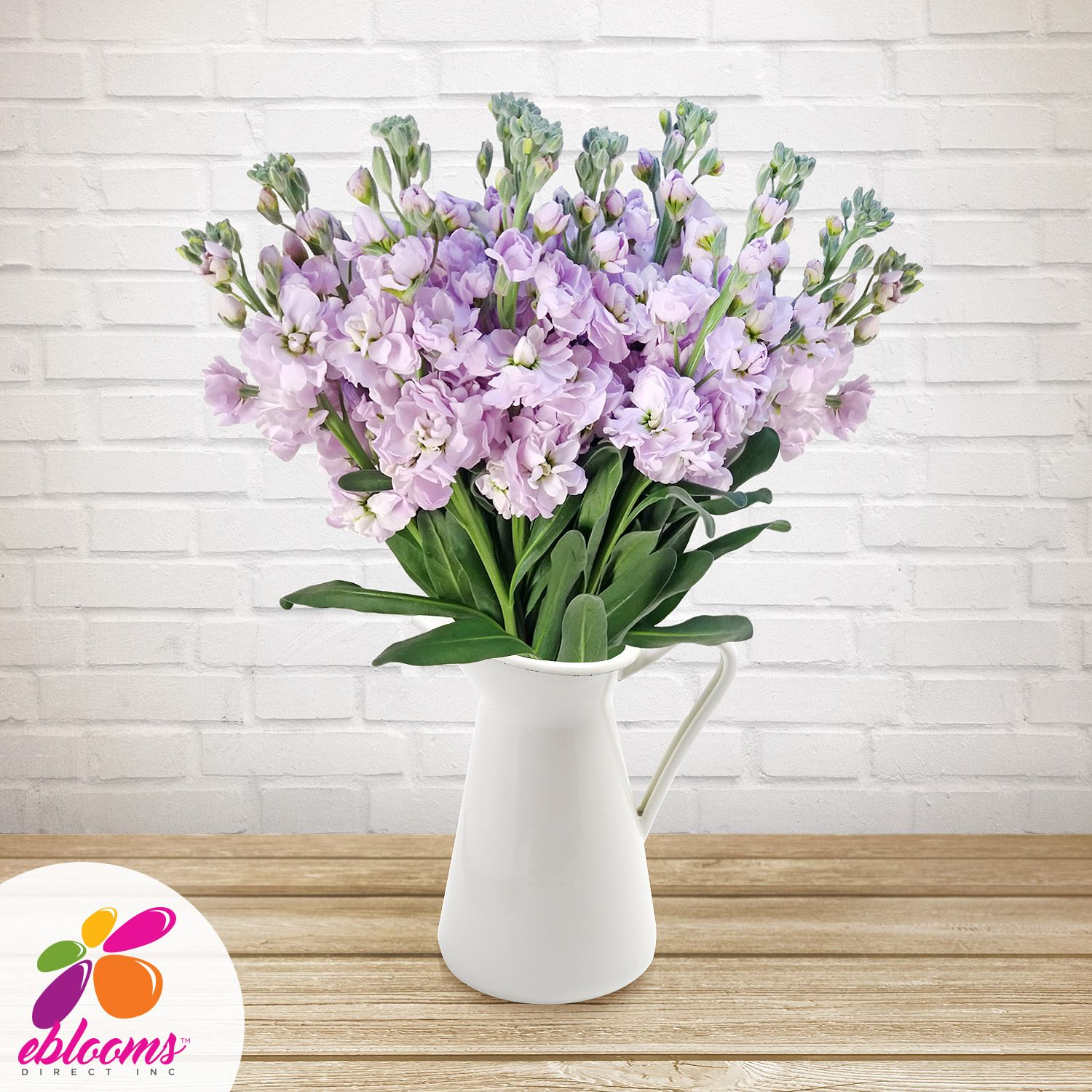 Stock Flowers Pack 80 Stems More Colors Available Ebloomsdirect Flowers Bouquet Gift Amazing Flowers Lavender Flowers