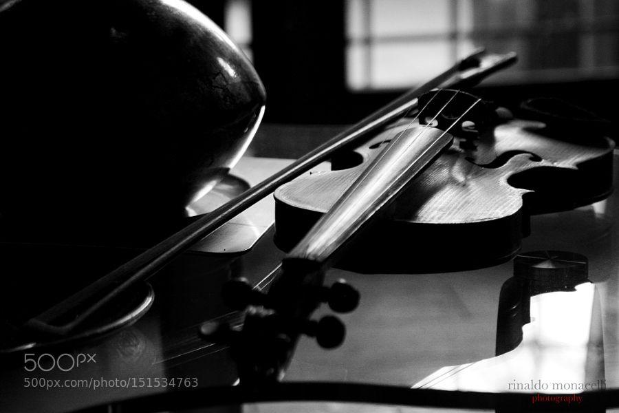 Violino by rinaldomonacelli Still Life Photography #InfluentialLime