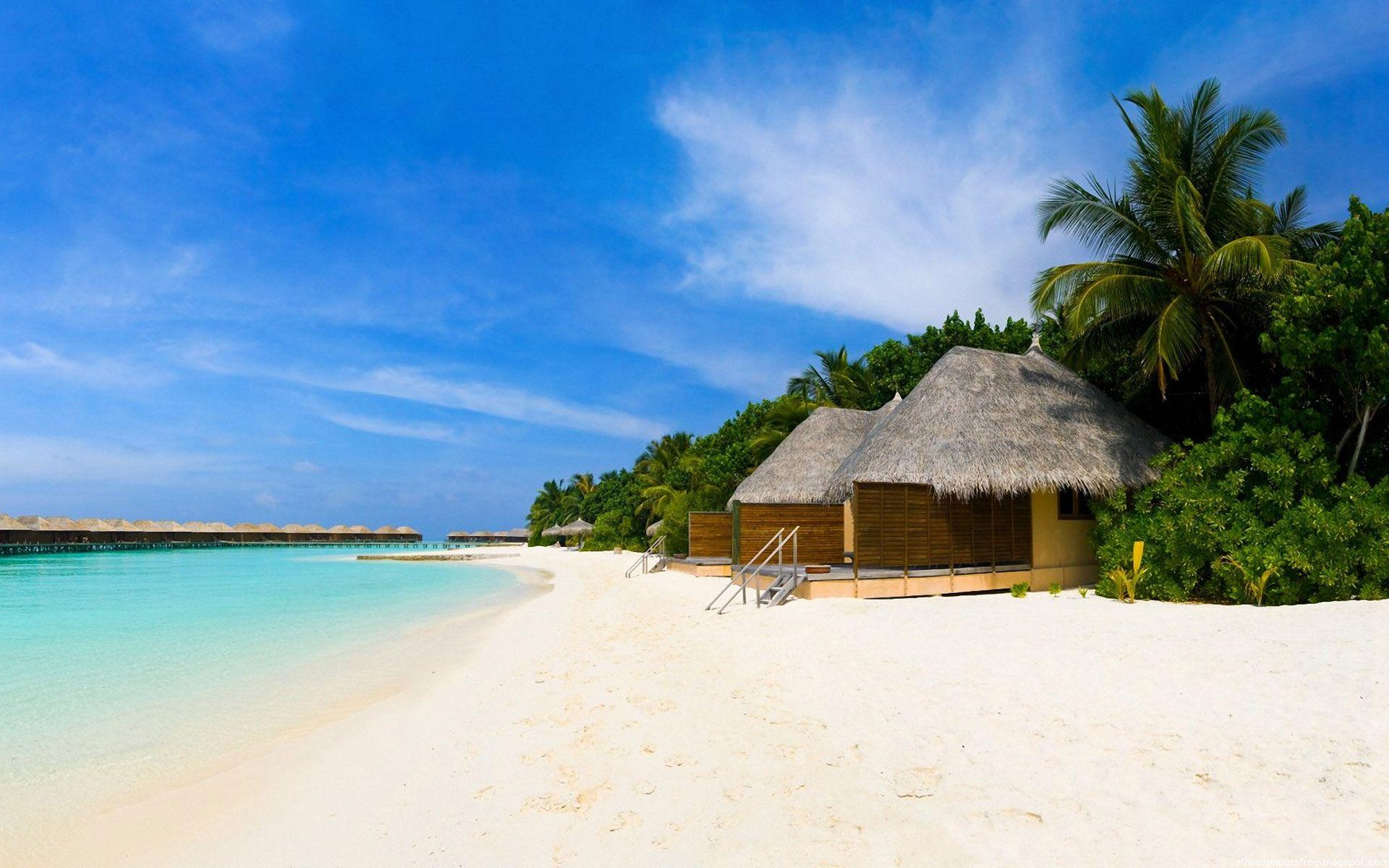 amazing holiday beach wallpapers hd | beach | pinterest | beach