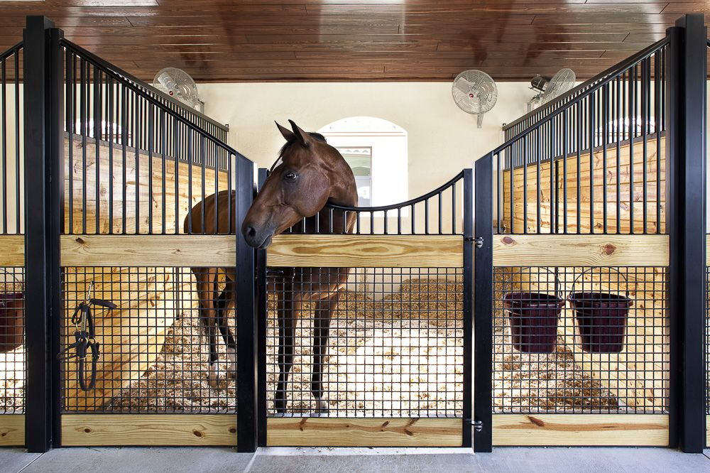 17+ Images About Horse Barn - Stall Design/Look On Pinterest